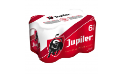 JUPILER 24X33CL (PACK 4X6)