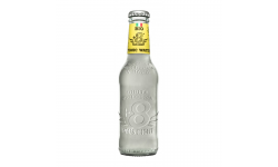 PLUS EIGHT TONIC BIO 4X6X20CL