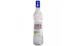 VODKA MOLOTOFF MELON 70CL